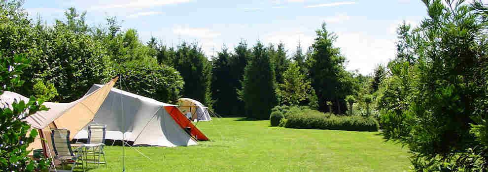 Kampeerplaatsen midden in het groen op kindvriendelijke en rustige boerencamping in Drenthe