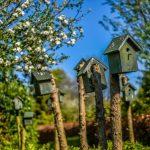 voordelige arrangementen op minicamping Drentsheerlijk in Drenthe