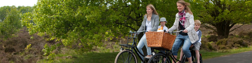 haal- en brengservice voor fietsers bij fiets4daagse arrangement