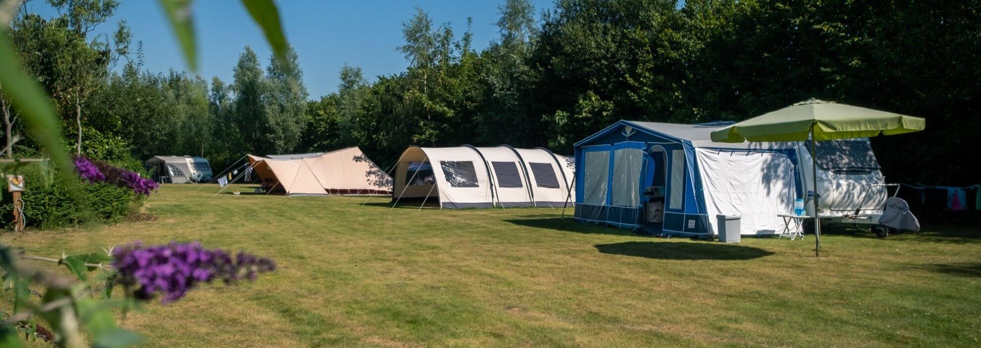 ruime-plaatsen-op-minicamping-in-Drenthe