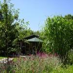 Ruim vakantiehuisje op rustige minicamping in Drenthe